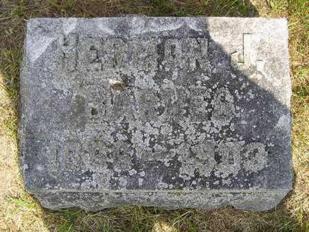 BARNES, HERMON - Branch County, Michigan | HERMON BARNES - Michigan Gravestone Photos