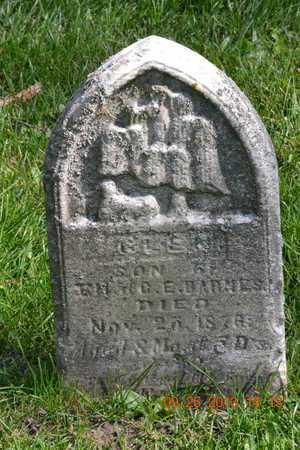BARNES, HELEN - Branch County, Michigan | HELEN BARNES - Michigan Gravestone Photos