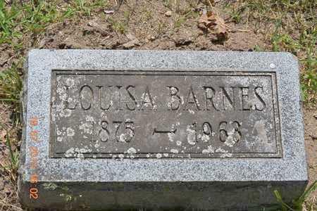 BARNES, LOUISA - Branch County, Michigan   LOUISA BARNES - Michigan Gravestone Photos