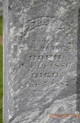 BARNES, PERRY A. (CLOSEUP) - Branch County, Michigan | PERRY A. (CLOSEUP) BARNES - Michigan Gravestone Photos