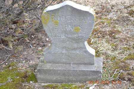 BARNES, ROBERTA - Branch County, Michigan | ROBERTA BARNES - Michigan Gravestone Photos