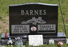 BARNES, STEVE L. - Branch County, Michigan | STEVE L. BARNES - Michigan Gravestone Photos