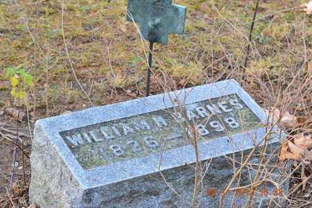 BARNES, WILLIAM H. - Branch County, Michigan   WILLIAM H. BARNES - Michigan Gravestone Photos