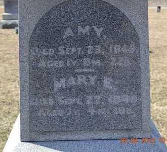 BARNHART, AMY - Branch County, Michigan   AMY BARNHART - Michigan Gravestone Photos