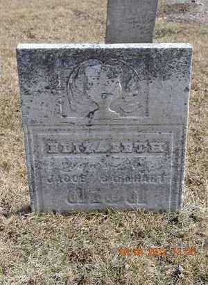 BARNHART, ELIZABETH - Branch County, Michigan | ELIZABETH BARNHART - Michigan Gravestone Photos