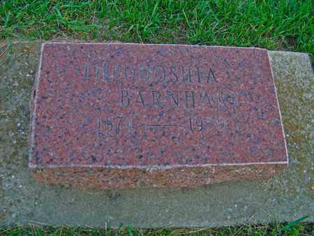 BARNHART, THEODOSHIA - Branch County, Michigan | THEODOSHIA BARNHART - Michigan Gravestone Photos