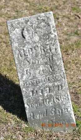 BATTERSON, ALBERT - Branch County, Michigan   ALBERT BATTERSON - Michigan Gravestone Photos