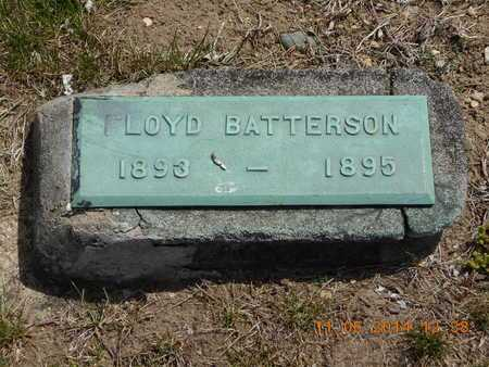 BATTERSON, FLOYD - Branch County, Michigan | FLOYD BATTERSON - Michigan Gravestone Photos