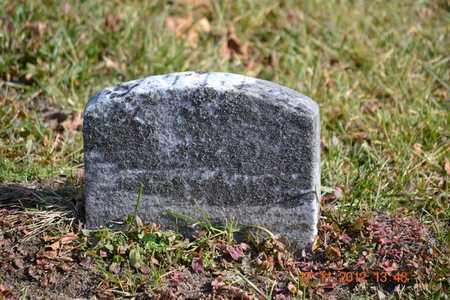 BENSON, EDWARD - Branch County, Michigan | EDWARD BENSON - Michigan Gravestone Photos