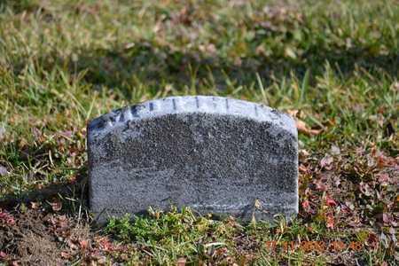 BENSON, SARAH J. - Branch County, Michigan | SARAH J. BENSON - Michigan Gravestone Photos