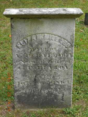BENTON, ELIZA M. - Branch County, Michigan | ELIZA M. BENTON - Michigan Gravestone Photos