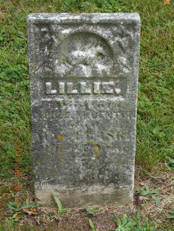 BENTON, LILLIE - Branch County, Michigan | LILLIE BENTON - Michigan Gravestone Photos