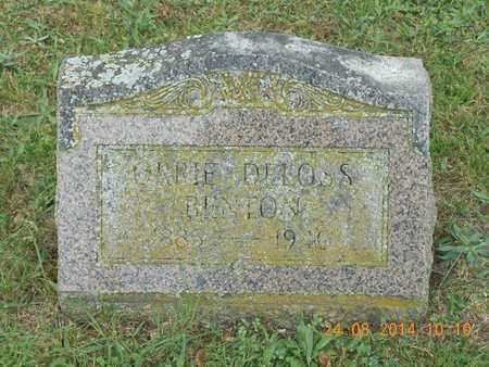 BENTON, ORRIE D. - Branch County, Michigan | ORRIE D. BENTON - Michigan Gravestone Photos