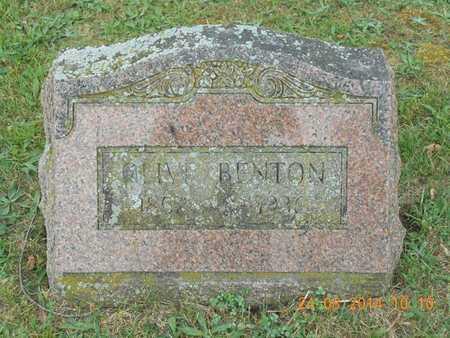 BENTON, OLIVE - Branch County, Michigan   OLIVE BENTON - Michigan Gravestone Photos