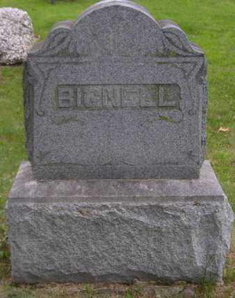 BIGNELL, FAMILY MARKER - Branch County, Michigan | FAMILY MARKER BIGNELL - Michigan Gravestone Photos