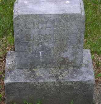 BIGNELL, LILLIAN A. - Branch County, Michigan   LILLIAN A. BIGNELL - Michigan Gravestone Photos