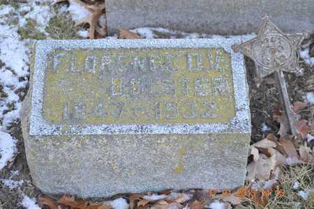 BOLSTER, FLORENCE D.V. - Branch County, Michigan | FLORENCE D.V. BOLSTER - Michigan Gravestone Photos