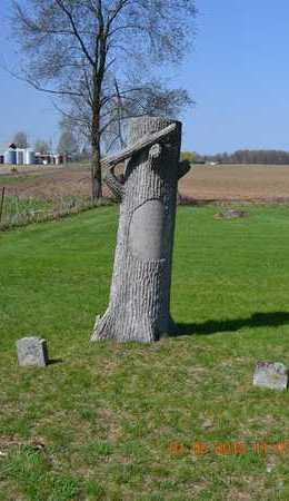 BRINK, OLIVER - Branch County, Michigan | OLIVER BRINK - Michigan Gravestone Photos