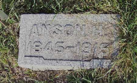 BROWN, ANSON - Branch County, Michigan | ANSON BROWN - Michigan Gravestone Photos