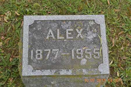 BROWN, ALEX - Branch County, Michigan   ALEX BROWN - Michigan Gravestone Photos