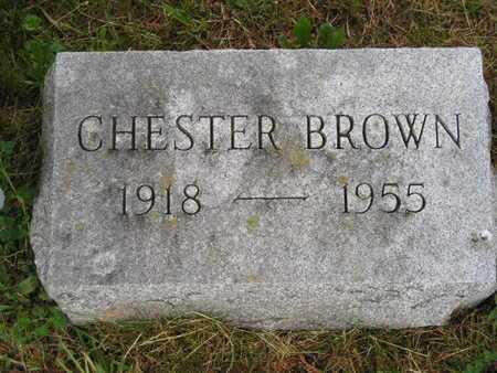 BROWN, CHESTER - Branch County, Michigan | CHESTER BROWN - Michigan Gravestone Photos
