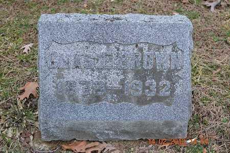BROWN, CHARLES E. - Branch County, Michigan | CHARLES E. BROWN - Michigan Gravestone Photos
