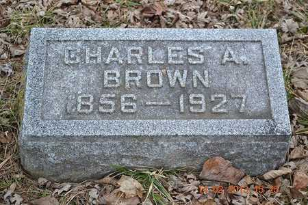 BROWN, CHARLES A. - Branch County, Michigan | CHARLES A. BROWN - Michigan Gravestone Photos