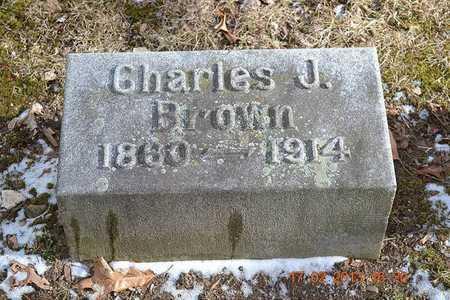 BROWN, CHARLES J. - Branch County, Michigan | CHARLES J. BROWN - Michigan Gravestone Photos