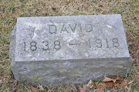 BROWN, DAVID - Branch County, Michigan   DAVID BROWN - Michigan Gravestone Photos