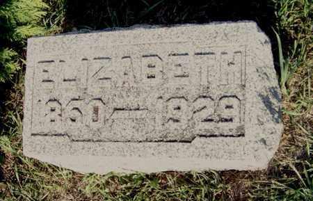 BROWN, ELIZABETH - Branch County, Michigan   ELIZABETH BROWN - Michigan Gravestone Photos