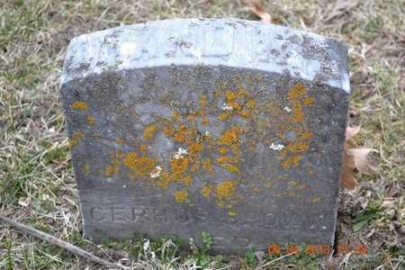 BROWN, EMELIA - Branch County, Michigan   EMELIA BROWN - Michigan Gravestone Photos