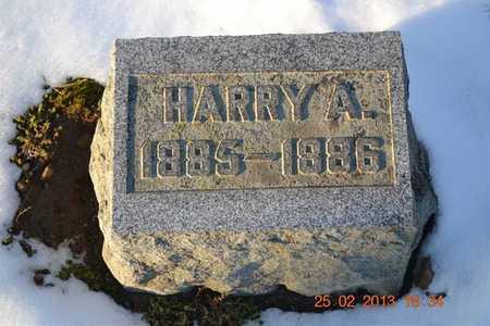 BROWN, HARRY A. - Branch County, Michigan | HARRY A. BROWN - Michigan Gravestone Photos