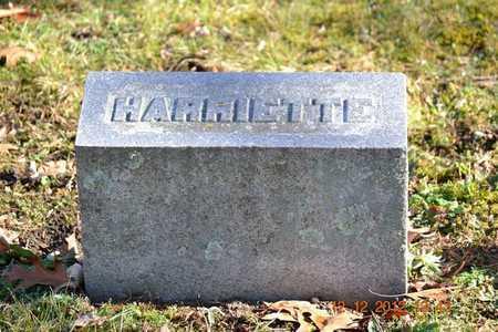 BROWN, HARRIETTE - Branch County, Michigan   HARRIETTE BROWN - Michigan Gravestone Photos