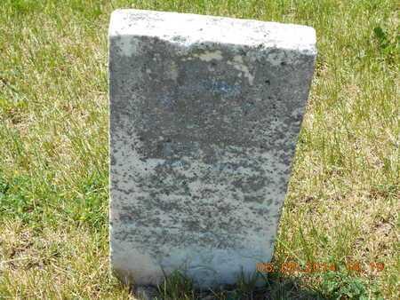 BROWN, IRA E. - Branch County, Michigan | IRA E. BROWN - Michigan Gravestone Photos