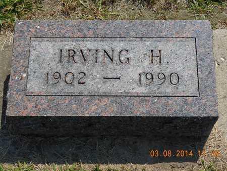 BROWN, IRVING H. - Branch County, Michigan | IRVING H. BROWN - Michigan Gravestone Photos
