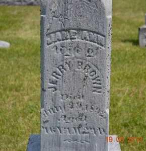 BROWN, JANE ANN - Branch County, Michigan   JANE ANN BROWN - Michigan Gravestone Photos
