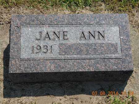 BROWN, JANE ANN - Branch County, Michigan | JANE ANN BROWN - Michigan Gravestone Photos