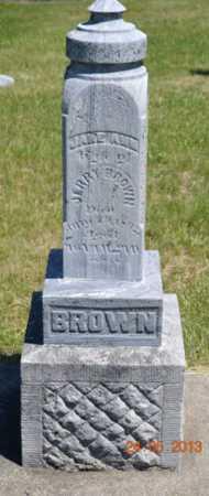 BROWN, JANE ANN - Branch County, Michigan | JANE ANN BROWN - Michigan Gravestone Photos
