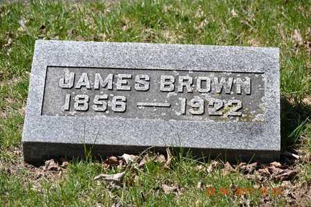 BROWN, JAMES - Branch County, Michigan   JAMES BROWN - Michigan Gravestone Photos