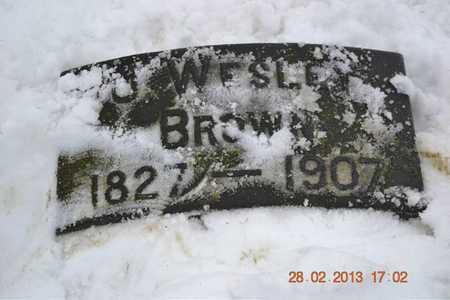 BROWN, J. WESLEY - Branch County, Michigan   J. WESLEY BROWN - Michigan Gravestone Photos