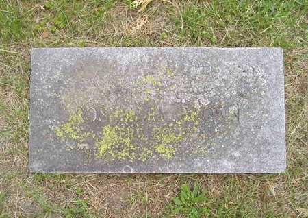 BROWN, ROSEMARY - Branch County, Michigan | ROSEMARY BROWN - Michigan Gravestone Photos