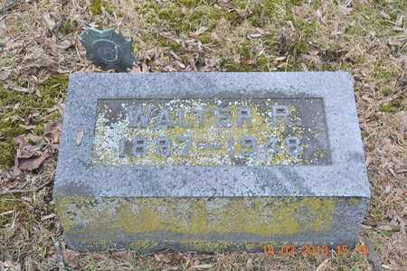 BROWN, WALTER R. - Branch County, Michigan | WALTER R. BROWN - Michigan Gravestone Photos