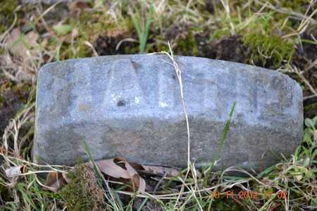 BRYAN, HATTIE E. - Branch County, Michigan   HATTIE E. BRYAN - Michigan Gravestone Photos