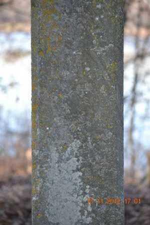 BRYAN, ELIZA A. - Branch County, Michigan | ELIZA A. BRYAN - Michigan Gravestone Photos