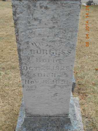 BURGESS, CATHERINE A. - Branch County, Michigan | CATHERINE A. BURGESS - Michigan Gravestone Photos