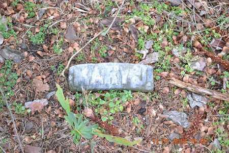 BURGESS, MARY J. - Branch County, Michigan | MARY J. BURGESS - Michigan Gravestone Photos