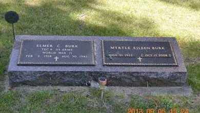 BURK, ELMER C. - Branch County, Michigan | ELMER C. BURK - Michigan Gravestone Photos