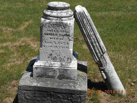 BURK, FAMILY - Branch County, Michigan | FAMILY BURK - Michigan Gravestone Photos