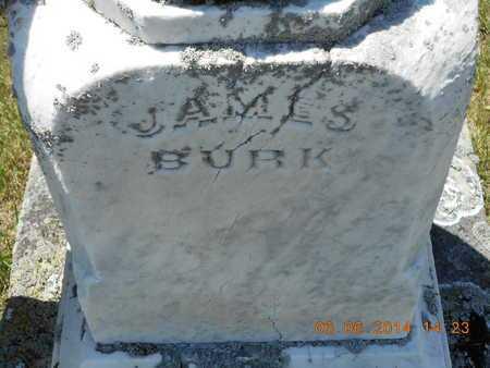 BURK, JAMES - Branch County, Michigan | JAMES BURK - Michigan Gravestone Photos