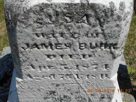 BURK, SUSAN - Branch County, Michigan | SUSAN BURK - Michigan Gravestone Photos